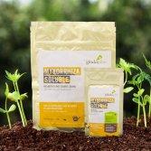 Mykorrhiza-Soluble-